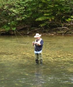 ribič